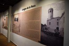 Història de la Torre Marimon